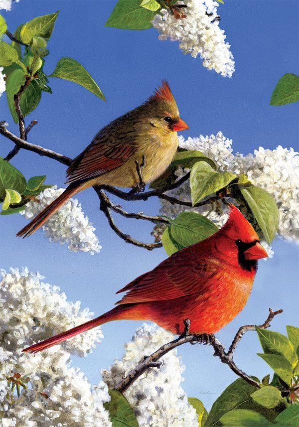 Drapeau - Cardinal et Lilas 28'' x 40''