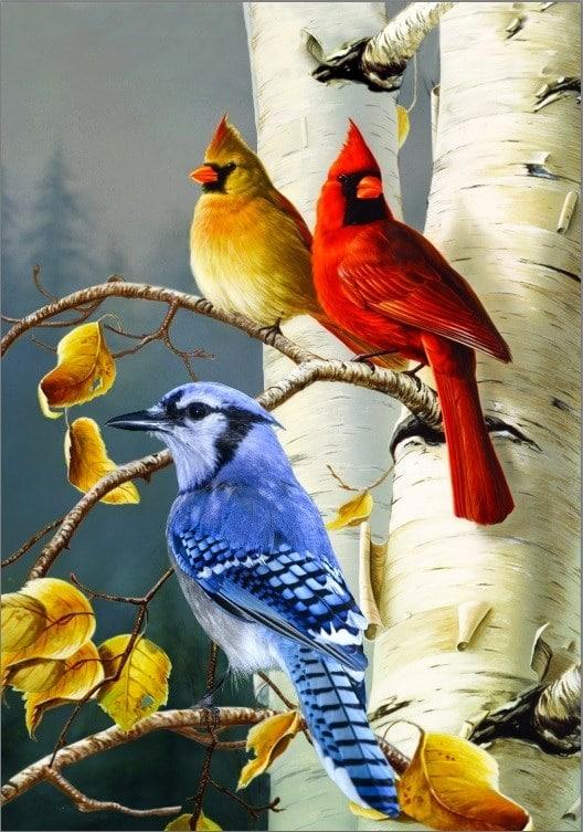 Drapeau - Oiseaux de Chez Nous 28'' x 40''