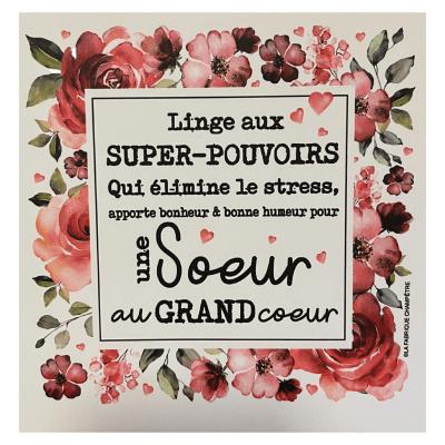 Linge aux Super-Pouvoirs - Une sœur au grand cœur